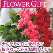 【送料無料】うれしいとき、楽しいとき、幸せなとき…バラの花束を贈りましょう
