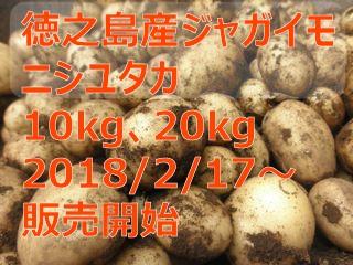徳之島産じゃがいも ニシユタカ 10kg 20kg