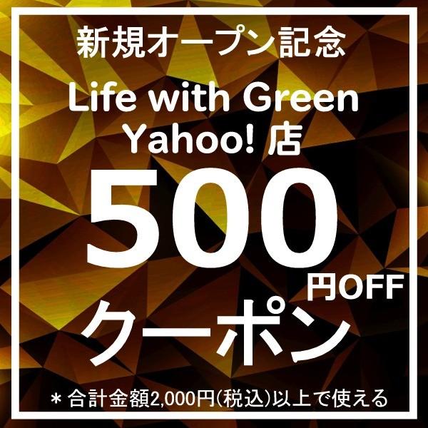 新規オープン記念クーポン500