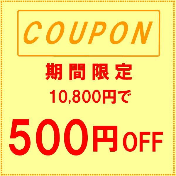 500円割引クーポン