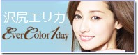 EverColor1day(エバーカラーワン