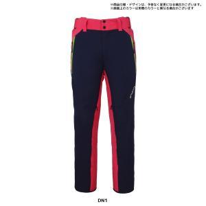 18-19 PHENIX(フェニックス)【在庫処分/パンツ】 Phenix Team 3-D Pants(フェニックスチーム3Dパンツ)PF872OB03【スキーパンツ】 linkfast 13