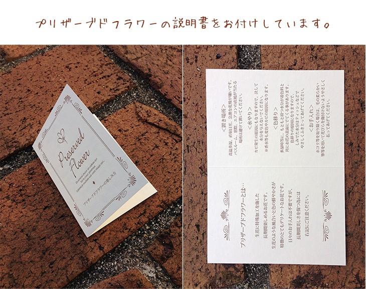プリザーブドフラワー壁掛けフレームブルー/父の日/誕生日/lpm0019 商品イメージ5