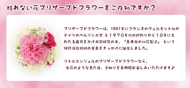 プリザーブドフラワーブラウンのフォトフレームスモーキーピンク 商品イメージ9