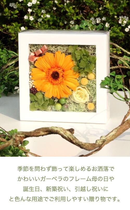 フルーティーオレンジのガーベラミニフレーム lpm0120 商品イメージ2