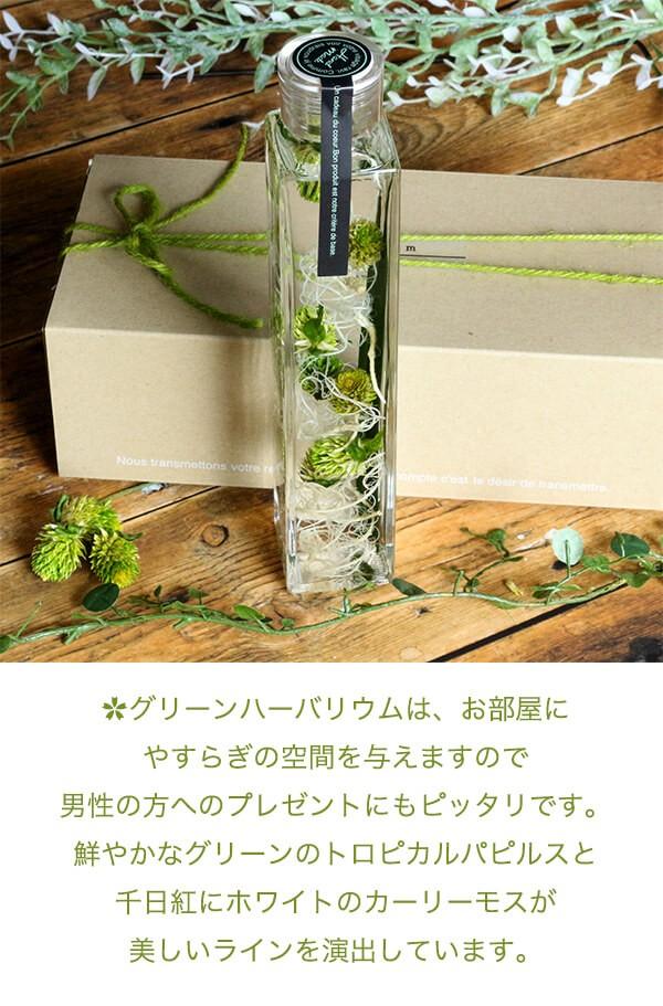 グリーンハーバリウム  ボタニカル 千日紅 商品イメージ0