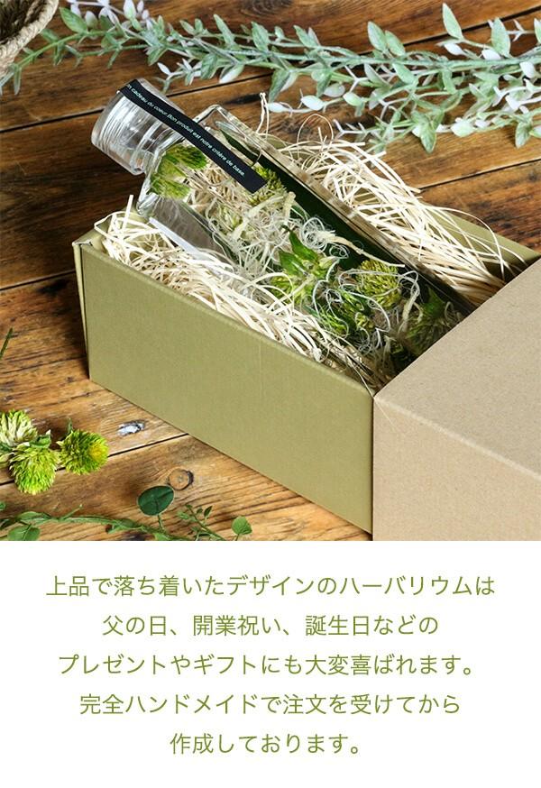 グリーンハーバリウム  ボタニカル 千日紅 商品イメージ2