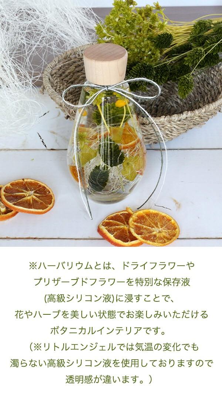 ハーバリウムギフト ドロップボトル オレンジ&グリーン 商品イメージ0