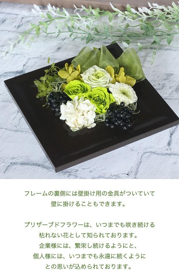 フレッシュグリーンminiフレーム 商品イメージ1