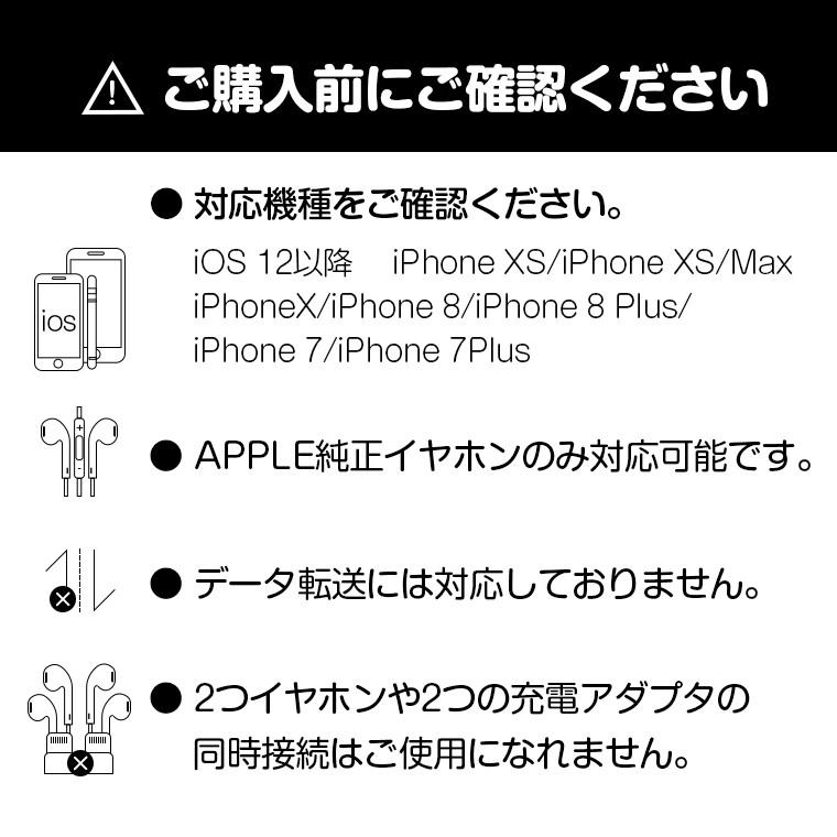 iPhone8 PLUS アダプタ 充電ケーブル