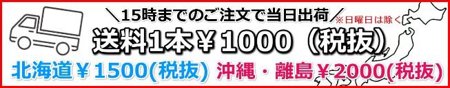 送料1本1100円
