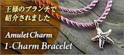 アミュレットチャーム ブレスレット テレビ紹介モデル2