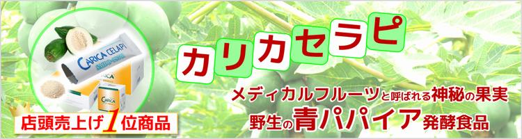 青パパイア発酵食品 カリカセラピ