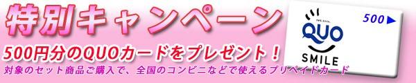 500円クオカードプレゼントキャンペーン