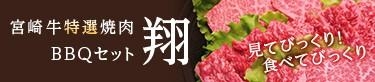 見てびっくり!食べてびっくり 宮崎牛特選焼肉BBQセット「翔」