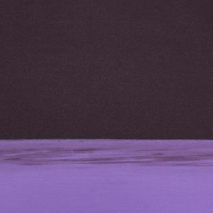 マンドゥカ Manduka ヨガマット 1.5mm エコスーパーライトマット トラベルマット 軽量 1360 ピラティス lucida-gulliver 23