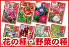 花の種・野菜の種・栽培キット