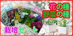 花の種・野菜の種