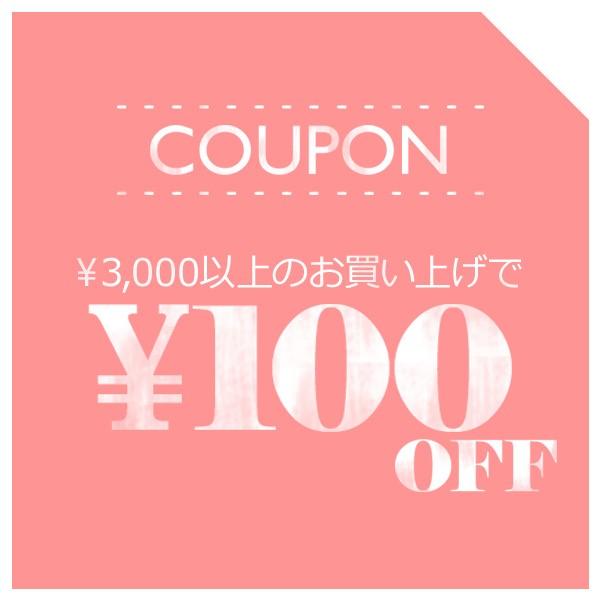 今だけお得! 3,000円(税込)以上お買い上げで、100円引き!