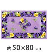 50cm×80cm