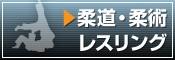 スポーツTシャツ(柔道・柔術・レスリング)