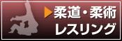 オリジナルタオル(柔道・柔術・レスリング)