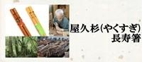 屋久杉(箸)