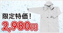 限定特価! 2,980円