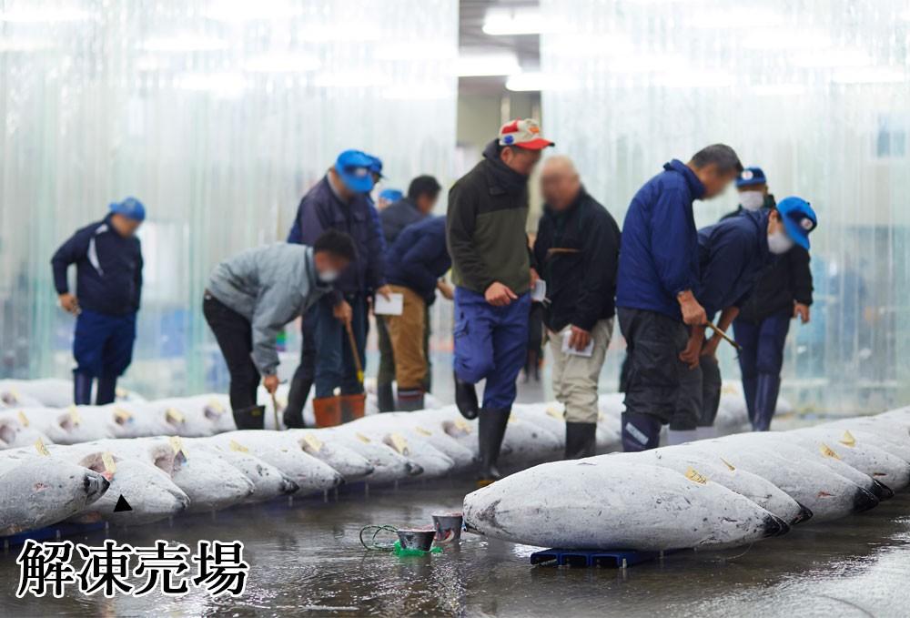 焼津魚市場 解凍売り場