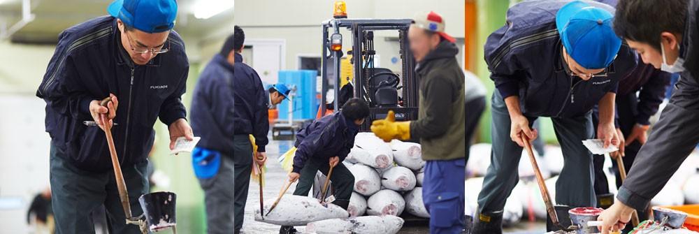 焼津魚市場 福一漁業