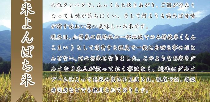 農林48号