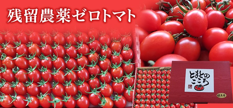 残留農薬ゼロトマト