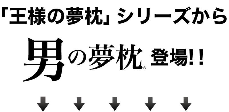 「王様の夢枕」シリーズから、「男の夢枕」登場!!