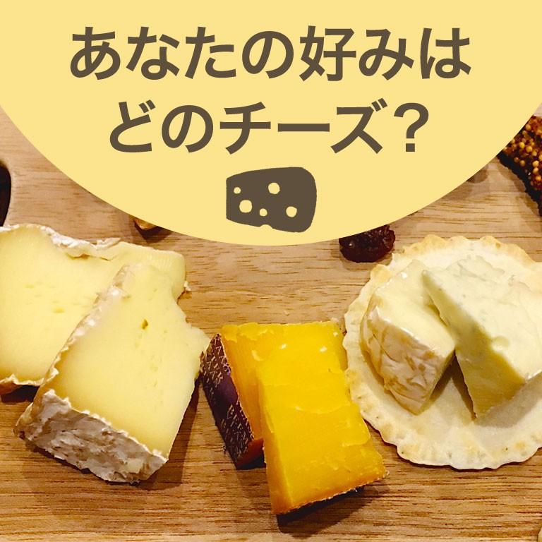 チーズ特集