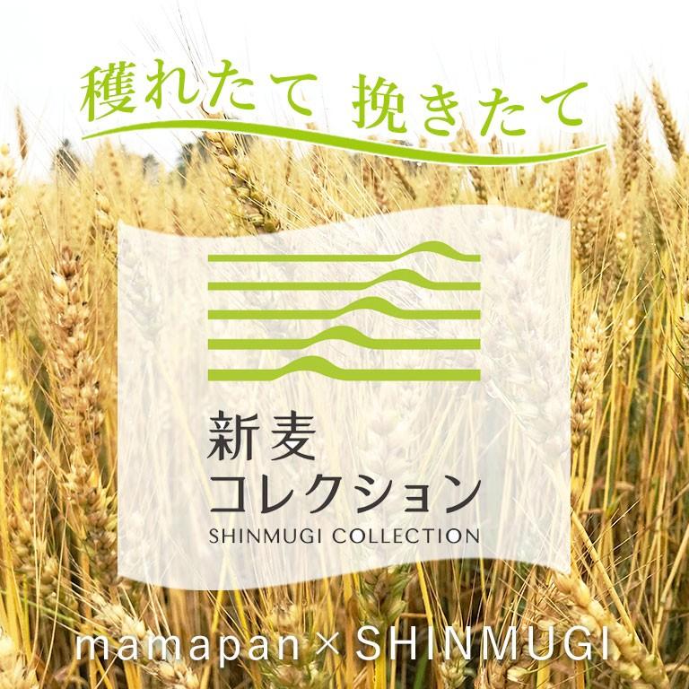 新麦コレクション