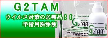 G2TAM