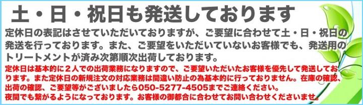 """""""増子水景12月9日最新"""""""
