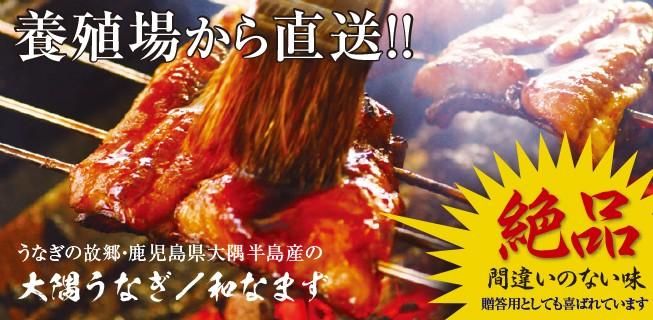 鰻蒲焼メインビジュアル
