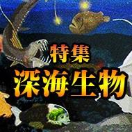 国立科学博物館2017企画展◆深海特集