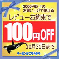 レビューで100円引きクーポン