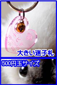 500円玉サイズの迷子  札