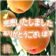 岡山産の清水白桃