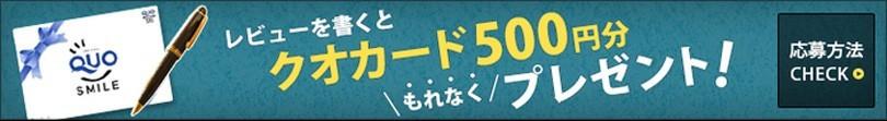 レビューを書いて500円分クーポンGET