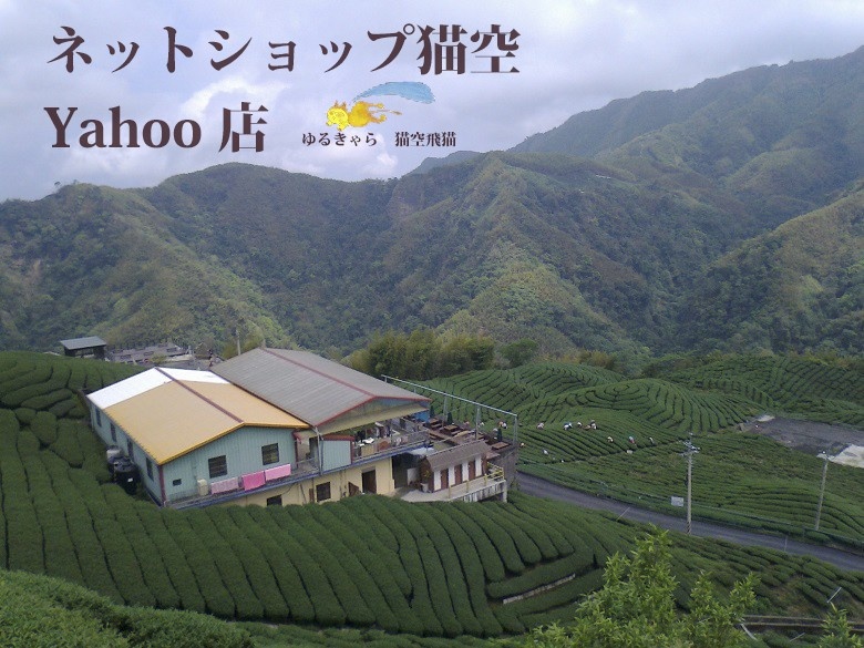 台湾 高山烏龍茶 八卦茶園 八卦茶 取扱い
