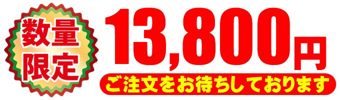 13800円 税込価格・安心3ヶ月保証