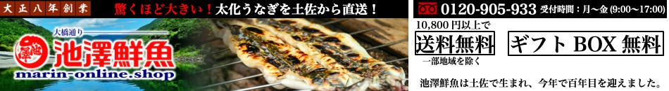 大正八年創業の池澤鮮魚 本場高知カツオのたたきやうなぎの通販