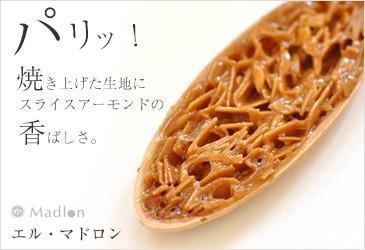 こ舟 エル・マドロン 焼菓子