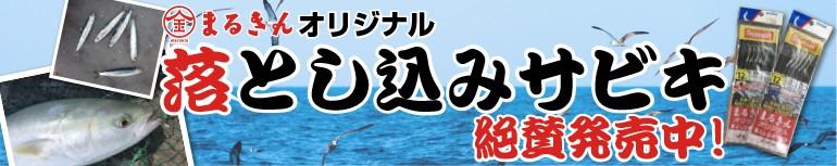 """""""落とし込みサビキ"""""""