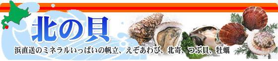 活帆立、ホタテ、アサリ、つぶ貝、蝦夷アワビ