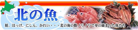鮭・ほっけ・にしん・喜知次・新巻鮭・かれいなど北の魚・一夜干し